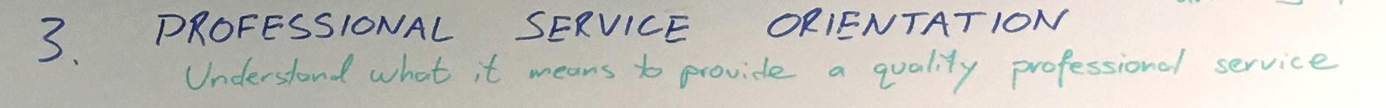 Professional Service Orientation